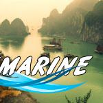 Приключение во Вьетнаме