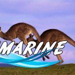 Новогоднее путешествие через всю Австралию с Shine!